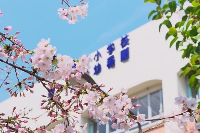 広島の園庭開放