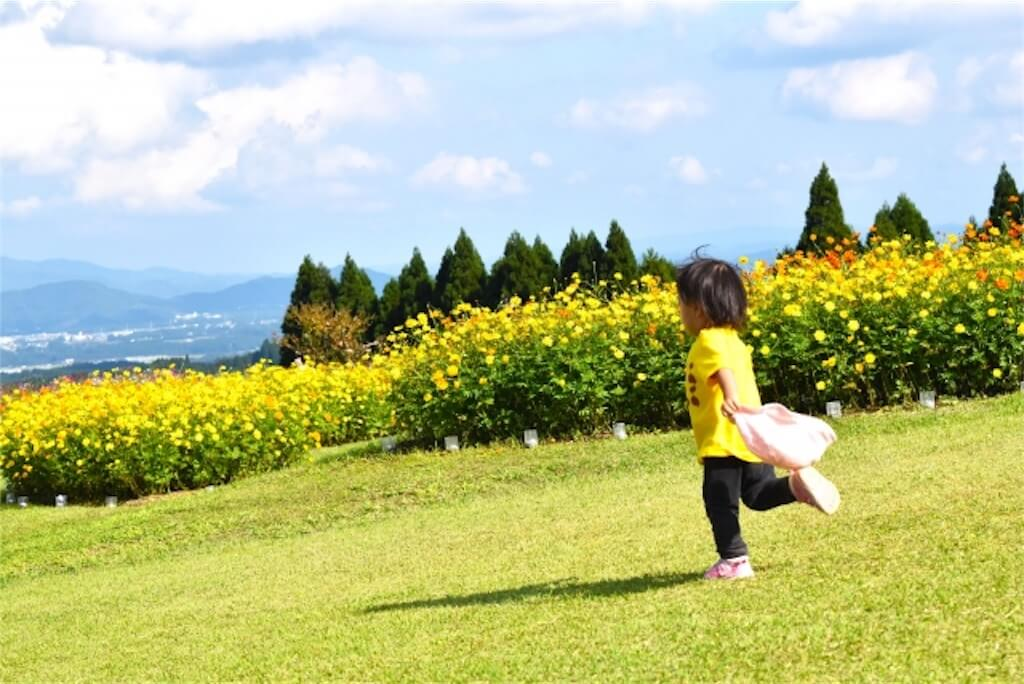 走る子供1歳児